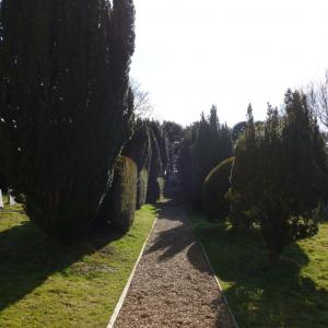 Yew lined path to Ogilvie War Memorial