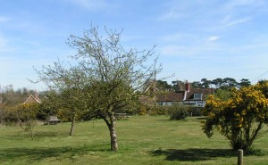 Photo of Aldringham Green
